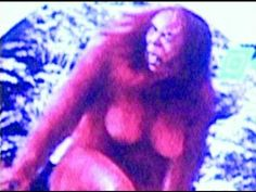 Bigfoot In China Documentary - Huh Dr Rogers from NABC is in this one, studying hair sample. Ufo, Bigfoot Photos, Blackfoot Indian, Mystery, Unexplained Phenomena, China, Ancient Aliens, World History, Paranormal