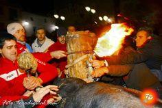 torodigital: Arañuel celebra el 'bou embolat'