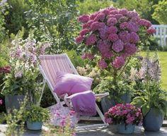 Decoração de jardim.