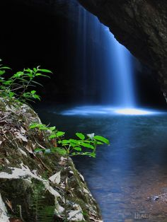 The Natural Arch in the Gold Coast hinterland. The waterfall flows through the roof of a cave, creating a natural arch at the front of the cave.