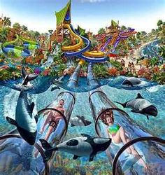 Best Water Parks in the US