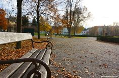The summer is over but the autumn season just started in a fancy way with a number of exciting festivals and cultural events in Bratislava. Outdoor Dining, Outdoor Decor, Bratislava, Restaurant, Indoor, Outdoor Furniture, Autumn, Park, Al Fresco Dinner
