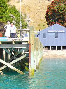 To the arrival photo gallery Marlborough Sounds, Next Holiday, New Zealand, Exploring, Gazebo, Photo Galleries, Tours, Island, Gallery