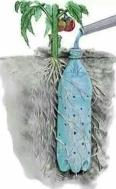 Helpful gardening with interesting recycling