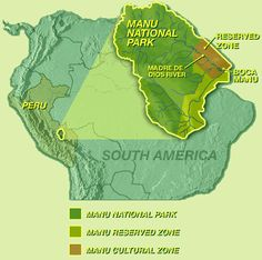 Manu Rainforest National Park, Peru