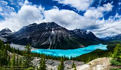 Peyto Lake by Gregory Boratyn (Banff National Park, Alberta, Canada)