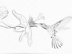 tatouage-tribal-bas-du-dos-femme-papillon (1600×1200