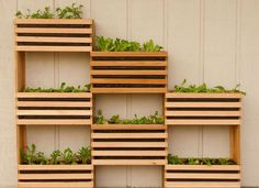 Cool idea for a DIY vertical planter. Perfect for small backyards that don't have a lot of space to grow a big garden