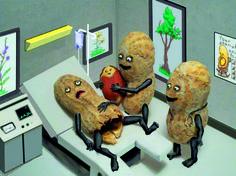 Es ist eine Erdnuss!