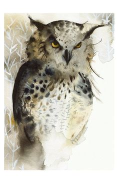 Great Horned Owl Archival Print 11 x 17 by amberalexander on Etsy, $35.00