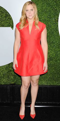 Amy Schumer in a little red dress, 2014 Amy Schumer, Celebrity Red Carpet, Celebrity Style, Curvy Fashion, Plus Size Fashion, Sexy Dresses, Evening Dresses, Lovely Dresses, Little Red Dress