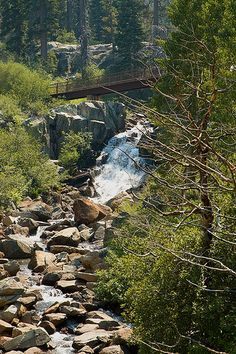 Eagle Falls Trail | Tahoma, CA 1.5 mile out and back trail that features a lake and is rated as moderate. The trail is primarily used for hiking and is accessible from March until November. Dogs are also able to use this trail but must be kept on leash