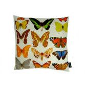 Found it at AllModern - Butterfly Row Indoor/Outdoor Throw Pillow