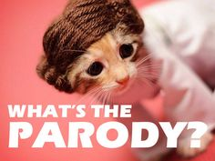 Quiz: What's the Parody? Tv Show Quizzes, Online Quizzes, Personality Quizzes, Playbuzz, Theme Song, 2000s, Trivia, Cool Things To Make, Favorite Tv Shows