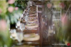 Traci Arney Photography | Willow Oaks Plantation Wedding | Danville VA www.traciarneyphotography.com