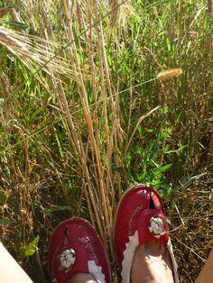 Summer shoes Summer Shoes, My Photos, Inspire, Sandals, Inspiration, Slide Sandals, Biblical Inspiration, Shoes Sandals, Summer Sneakers