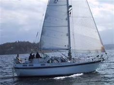 sailboat - Bing images