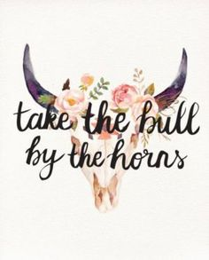 Take The Bull By The Horns * You're Daily Brain Vitamin * I don't care if you're not a bull fighter. Or even a rodeo clown. * You've Got This * Just Do It * motivation * inspiration * quotes * quote of the day * DBV