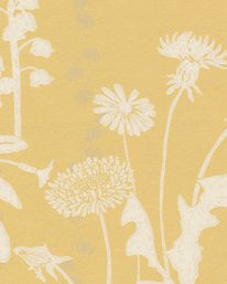 Tapet Wild Meadow Dandelion från Barneby Gates