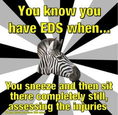 Trying to explain to the MA's when I have JUST a sinus infection that I can't keep sneezing all the time. I have EDS and POTS. Just ask my doc for an ATB, he'll write for it. No, I don't have to come in.