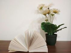Book and Flower.