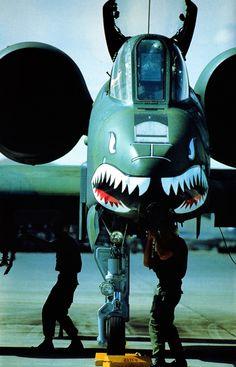 ..._A-10 warthog