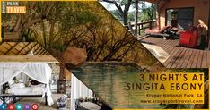 Singita Ebony #Lodge consists of twelve beautifully decorated private suites with a family friendly atmosphere and en-suite bathrooms. Ten of these rooms are 1-bedroom suites, the other two are 2-bedroom family suites. 3 night's at Singita Ebony Packages At Very Lowest Price. Enquiry On http://bit.ly/2q7qWlw