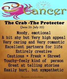 zodiac signs - cancer - the protector