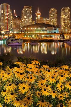 City lights and flowers in Vancouver British Columbia, Canada ~ Photo by. Places Around The World, Travel Around The World, Places To See, Oh The Places You'll Go, Around The Worlds, British Columbia, Dream Vacations, Vacation Spots, Wonderful Places