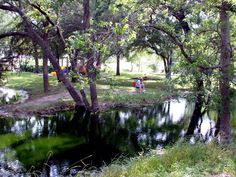 Rv Park for camping or lodging. Central Texas, West Texas, Rv Parks, Places To Go, Things To Do, Plants, Things To Make, Plant, Todo List