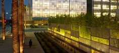 Smith Cardiovascular Research Building / Andrea Cochran Landscape Architecture