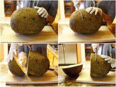 Jackfruit Cut