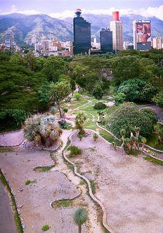 Jardín Botánico de Caracas | Alejandro Sosa Fotografía
