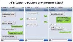 Whatsapp perro-humano.