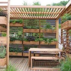 vertical vegetable garden trellis