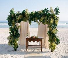 Plantas e folhagens que decoram: saiba quais são as mais utilizadas em casamentos!