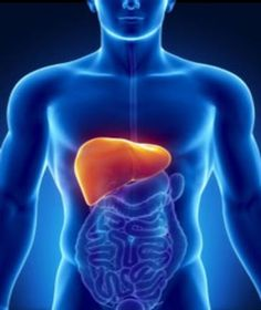 GLUTATHIONE HAS DIRECT CONNECTION TO LIVER / FUNCTION AND DETOXING