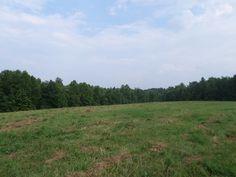 RECREATIONAL PROPERTY IN KENTUCKY - Property - LandAndFarm.com - Land for Sale