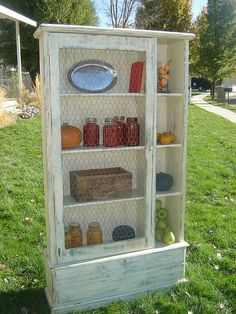cabinet with door/chicken wire - possible DIY for old TV bookshelf...
