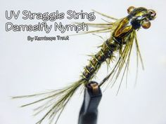 UV Straggle String Damselfly Nymph - Countdown to Ice off 2020 Fishing Lures, Fly Fishing, Mayfly, Fly Tying Patterns, Nymphs, Trout, Dragons, Water, Youtube