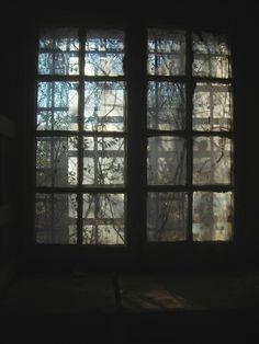 "Artist: Johnny Stephenson - ""Morning Light, Atlanta, GA - 22""X28"" photography Winter morning peering into an overgrown windowin the old Atlanta City Prison, GA"