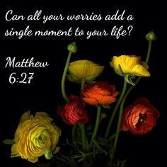 """Matthew 6:27 - """"Can all your worries add a single moment to your life?"""""""