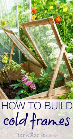 Cold frames are the means in which to grow a winter garden. All you need is four two-by-fours, a sheet of greenhouse material, and some nails!