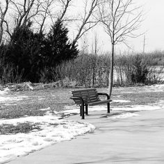 1.5 Chilly bench by shaneadams