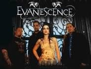 Evanescence: Gothic metal band with female lead singer, Amy Lee. Her outfits are a large part of their album art, marketing, and live shows.