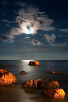 ~~ Moonlight Romance ~ Pahang, Malaysia by Steven Siow ~~