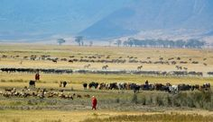 Tanzania Adventure - Tanzania
