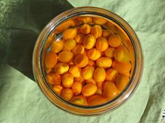 Steeping kumquats in vodka for two weeks is the first step in making this homemade citrus liqueur. I call it kumquacello! Kumquat Recipes, Fruit Recipes, Drink Recipes, Cocktail Drinks, Cocktail Recipes, Grilled Cod Recipes, Homemade Alcohol, Healthy Cocktails, Vodka