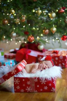 Newborn Christmas Photos - Newborn in a Present