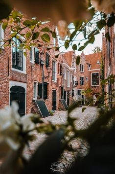 Umbrella Street, Day Trips From Amsterdam, Interesting Buildings, Most Beautiful Cities, Green Trees, Nice View, Travel Photography, Vacation, Freckles